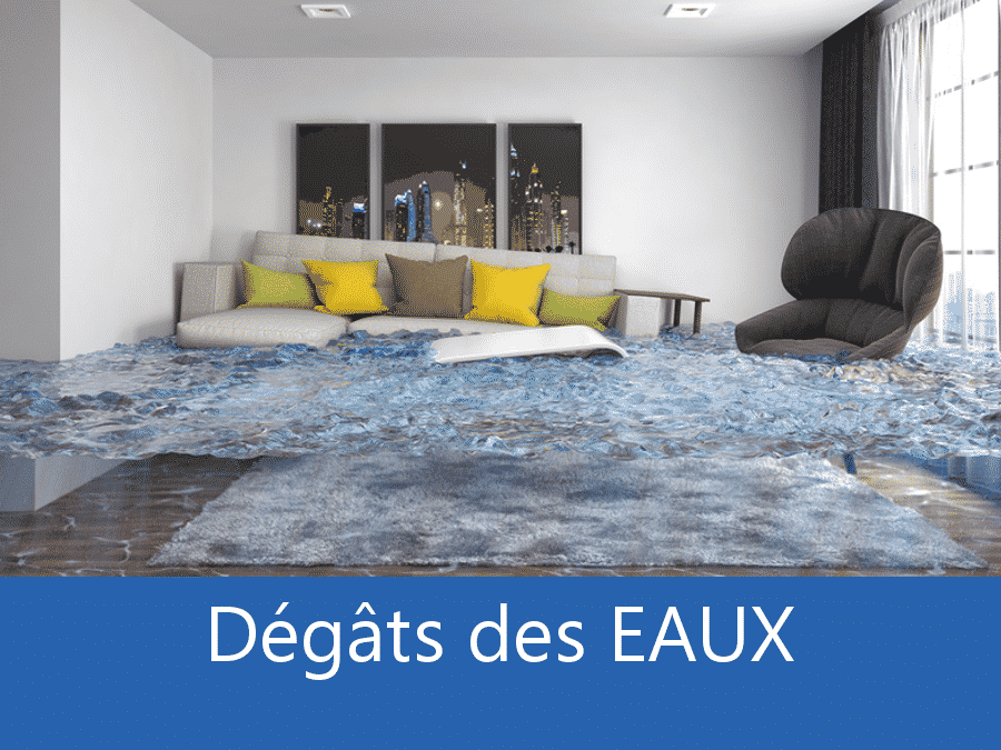 expertise humidité 95, expert humidité Argenteuil, cause moisissure Cergy, solutions hulidité Val-d'Oise,
